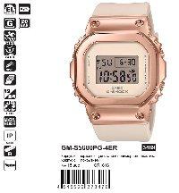 GM-S5600PG-4ER