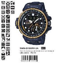 GWN-Q1000NV-2A